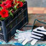 Czy warto kupować narzędzia ogrodnicze?